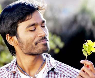 kutty-dhanush-2.jpg